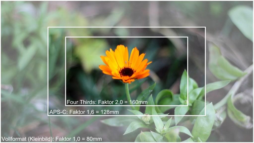 formatfaktor2
